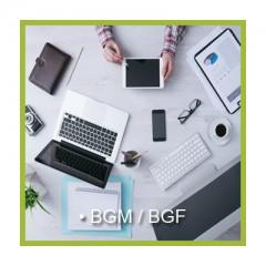 BGM / BGF
